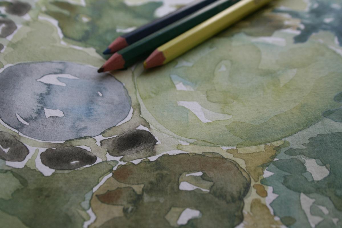akvarell 1200×800
